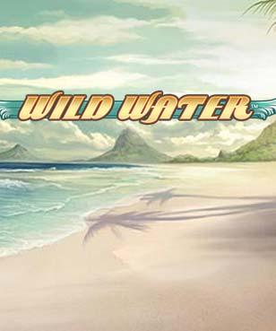 Wild Water logo